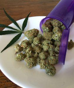 cannabis-1418325_1920